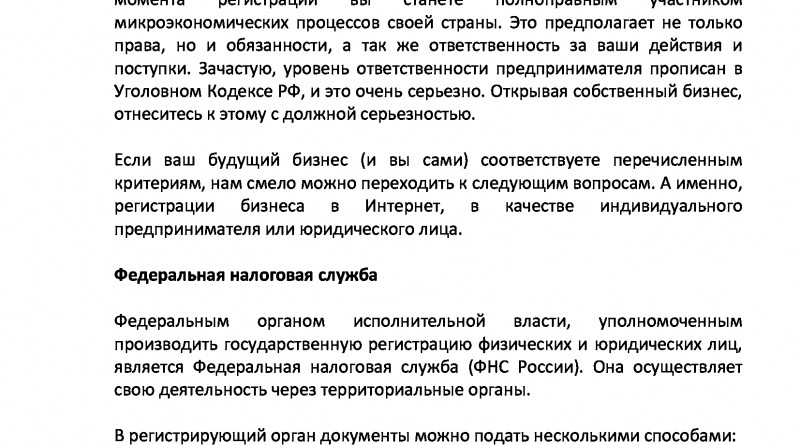Бизнес_в_Интернет_пошаговое_руководство-8